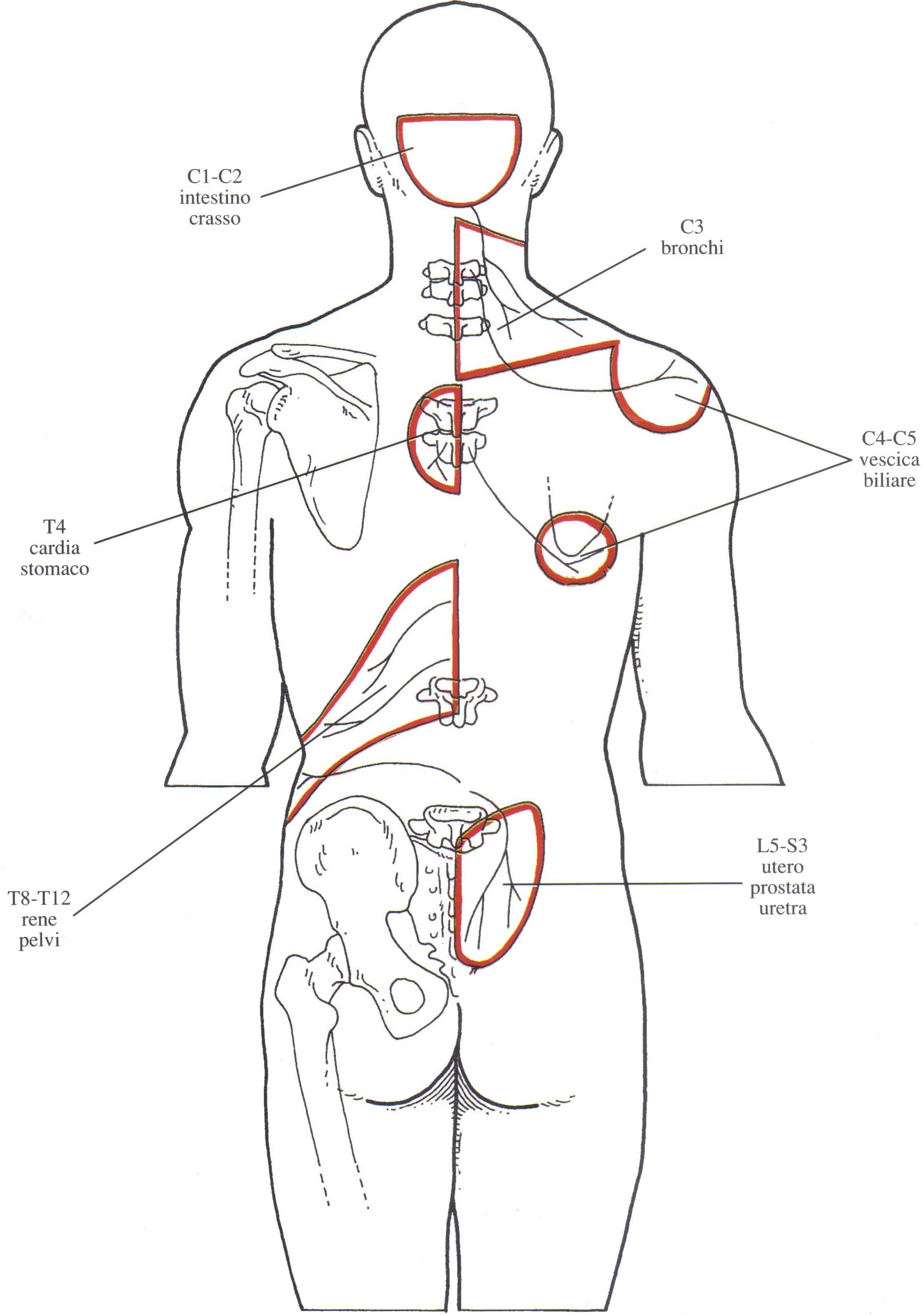 Fase 1 palpazione e messa a nudo delle tette di mia moglie - 5 1